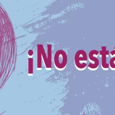 Guía de Orientación para Mujeres Víctimas de Violencia Doméstica (COVID-19)