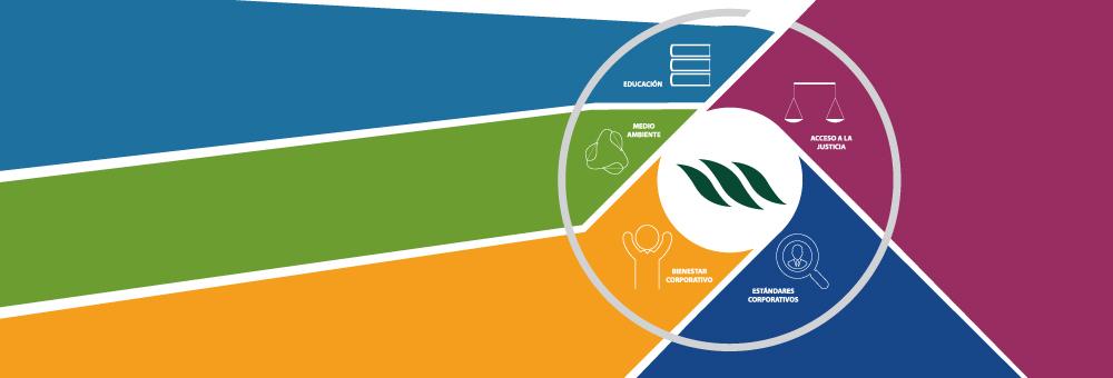 Estrategia de Sostenibilidad de Morgan & Morgan, MMG Bank y empresas afiliadas